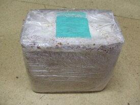 こだわりの菌糸ブロック・ブナ中粒子B100 3800cc1個 初令にお勧め!