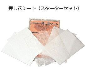 押し花シート(押し花製作スターターセット)