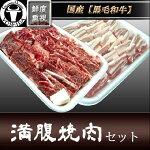 和牛カルビと豚バラの満腹焼肉セット送料無料