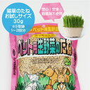 【高発芽率】【安心安全】【新鮮無農薬種子】猫草用のタネ(種)小分けして30gで発送【猫・犬・ウサギ・ハムスター・…