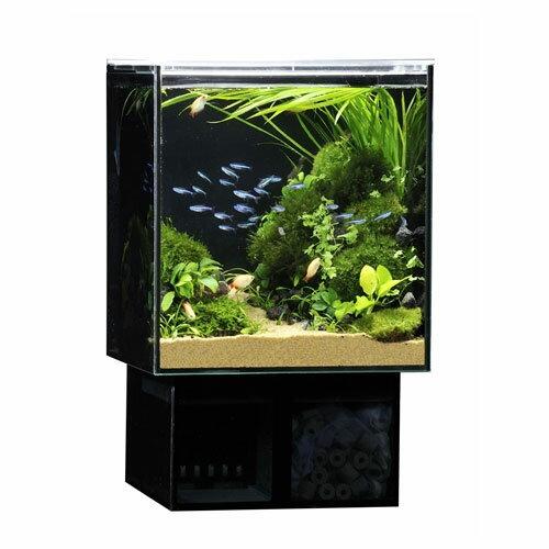 ≪とびきり価格≫GEX グラステリア アグス OF-230 オールガラスの小型オーバーフロー水槽