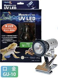 ゼンスイ ペットペットゾーン マイクロ UV LED + マイクロン灯具セット ライト 省エネ(80)