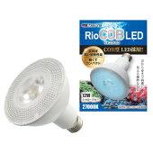 カミハタ照明RioCOBLEDシャローブルー(海水魚&サンゴ用)