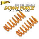 ダウンサス イスズ ピアッツァ(JR120)2WD H1/12〜3/9 1台分・前後セット ZOOM ローダウン サスペンション ダウンフォース【ISUZU】【RC…