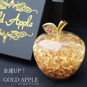 【1000円OFFクーポン配布中】ゴールドアップル  pa-gd-02bk