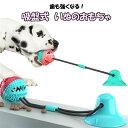 犬用おもちゃ ボール 吸盤式 検索用→ 犬臼歯噛みおもちゃ ストレス解消 運動不足解消 遊び ペット用 ペット用品 おも…