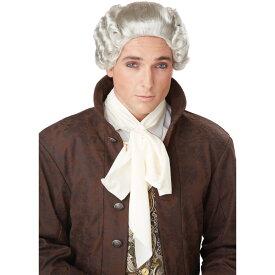グレー ロング束ね髪 ウィッグ、かつら 中世ヨーロッパ貴族 コスプレ