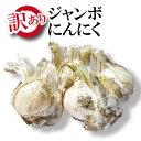 【平成30年度新物】青森県産 訳ありジャンボにんにく 1kg