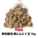 黒にんにく 玉 1kg 最安値に挑戦中【中国産特別栽培】