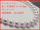 Img60219821
