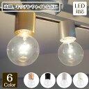 シーリングライト Bulb-Light-Cap バルブライトキャップ ACE-160   照明器具 照明 天井照明 直付け ライト ランプ 黒 …