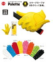 NEW キャスコ グローブ 8カラー パレット 8COLORS GOLF GLOVE Palette