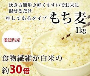 もち麦(押し) 1kg 愛媛県産 白いもち麦 オリジナル 雑穀米 ダイエット  国産 大麦 もちむぎ 食物繊維 押してある もっちり ご飯 健康 美肌効果 穀物 低カロリー 美肌 簡単 もちもち ダイ