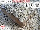 もち麦(押し) 5kg 愛媛県産 白いもち麦 当店オリジナル 雑穀米 ダイエット 国産 大麦 もちむぎ 食物繊維 押してあ…