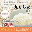 【1週間後発送】もち麦(丸) 1kg 白いもち麦 雑穀米 ダイエット 愛媛県産 国産 大麦 もちむぎ 食物繊維 ぷちぷち ご飯 健康 美肌効果 穀物