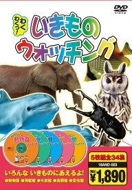 【新品】DVD5枚組 「いきものウォッチング」