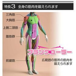 プランクローラーの腹筋以外への効果1