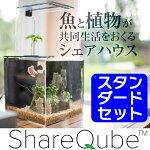 ShareQubeシェアキューブ魚と植物が共同生活をおくる水替え不要の水槽