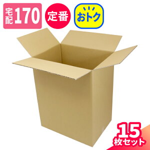 宅配170サイズ 定番 ゆうパック最大 深さ700mm 15枚 | ダンボール 170サイズ 段ボール 170 ダンボール箱 段ボール箱 梱包用 梱包資材 梱包材 梱包 ゆうパック 箱 宅配箱 宅配 引越し ボックス 大型