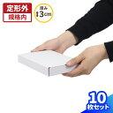 定形外郵便 ハガキサイズ 小型 白 157×107×24 【10枚】 | ダンボール 段ボール ダンボール箱 段ボール箱 ゆうパケッ…