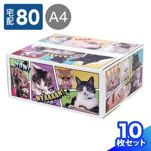 80サイズ 猫 デザイン ダンボール A4 344×289×143 【5枚】 猫だらけ   ダンボール 80サイズ かわいい 段ボール 箱 80 ダンボール箱 段ボール箱 梱包用 梱包資材 梱包材 宅配箱 宅配 デザイン ネコ