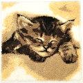 洗える足ふきマットバスマット速乾北欧かわいい猫ねこ柄