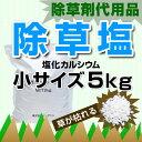 Ca5kg-s-sb2