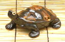 【日本の侘び寂びに欠かせない…】信楽焼 福寿亀 カメ5号 陶器 置物 縁起物 お正月 P06Dec14