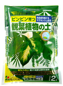 【花ごころ】 観葉植物の土 2L 初めての方でも安心。ピンピン育つ!! 元肥入り 培養土 園芸用土 ガーデニング用土