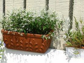 【3月12日再入荷】 植木鉢 ローマン プランター 37cm イタリア製 テラコッタ デローマ社*Italian Terracotta*