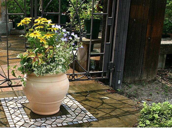 人気の植木鉢 マリア 24cm スペイン鉢 植木鉢 テラコッタ 陶器鉢 素焼き鉢 園芸 ガーデニング*Spanish Terracotta*