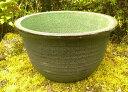 睡蓮鉢 風雅 13号 陶器製 中型睡蓮鉢 ビオトープ創りに!メダカや金魚に最適な睡蓮鉢です! 水生植物 ウォーターガーデ…