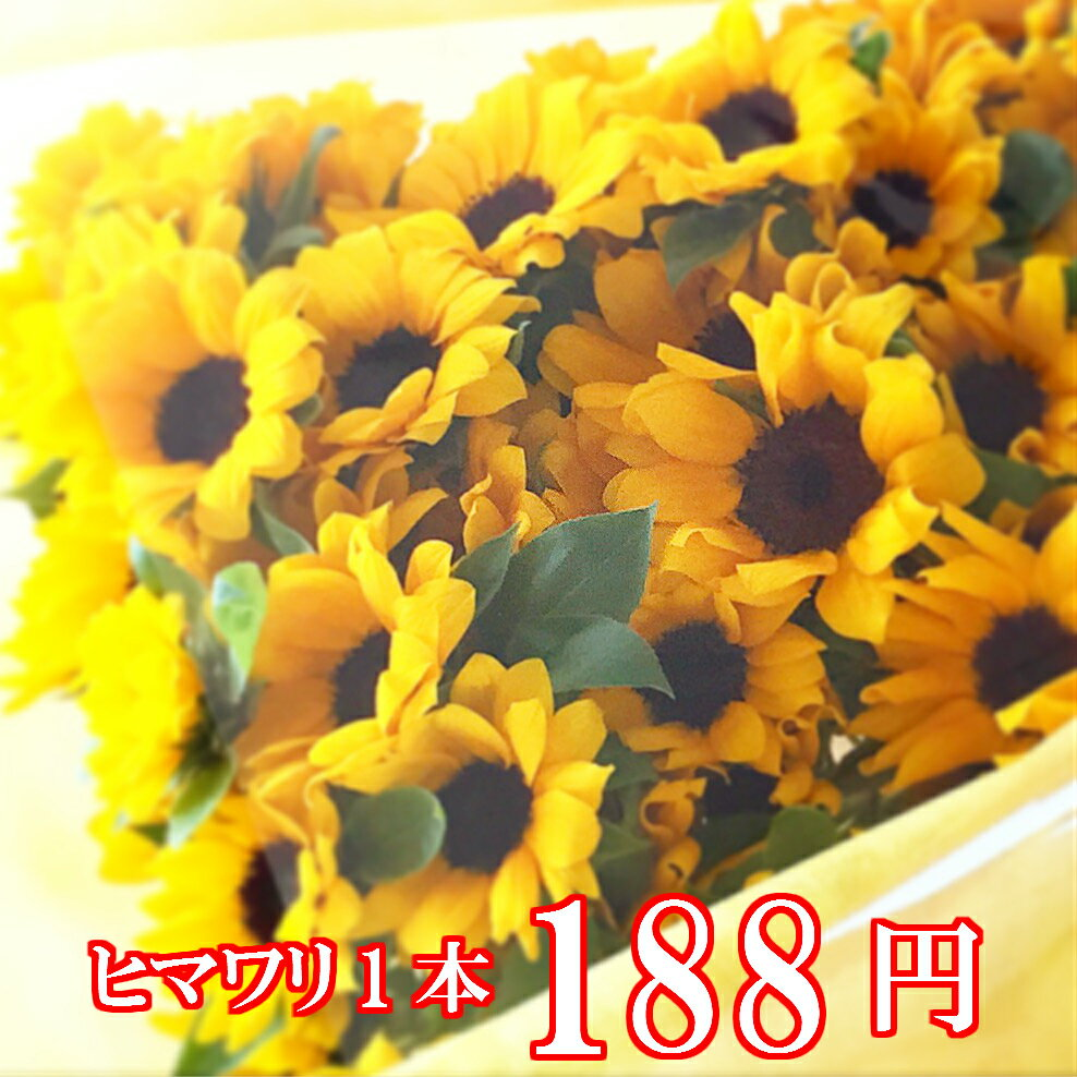 お好きな本数をどうぞ(10本以上)人気のヒマワリ1本 188円誕生日 花束 ひまわり 向日葵 生花