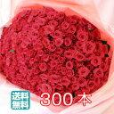 【送料無料】バラ 300本 花束 ギフト 無料メッセージカード付き 記念日 ギフト 誕生日 薔薇 ローズ 結婚式 生花 プロポーズ