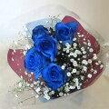 ブルーローズ・青いバラ