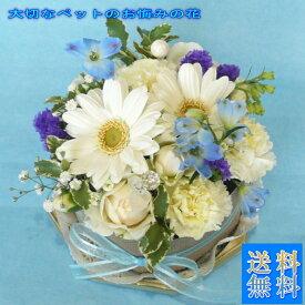 お供えの花/プチガトー 白&ブルー【お悔みの花】【送料無料】小さいお子様やペットのお悔みに 優しく可愛くお供えのお花を作ります。