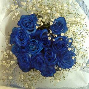 バラの花束/ブルーローズブーケ ブルーローズ20本&かすみそう 【smtb-tk】【結婚祝い 花】【誕生日 花】