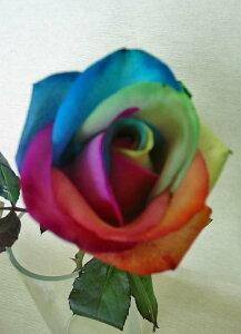 バラの花束/レインボーローズ60本【送料・カスミソウサービス】還暦のお祝いに