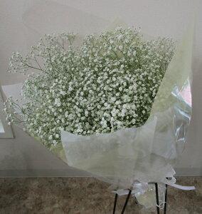 かすみそうの花束 M【かすみ草】【カスミソウ】