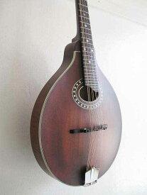 送料無料・ソフトケース付!Eastman Guitars イーストマンギターズ / MD-304 ( Oval-Hole ) A-Style models フラットマンドリン【smtb-tk】