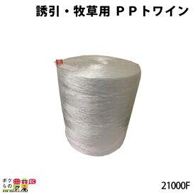 誘引・牧草用PPトワイン21000F 2巻 6380m(6.4kg/巻)(レクモ ボクらの農業)
