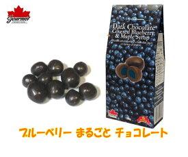 ブルーベリー まるごと チョコレート 各100g 【3箱セット】カナダ土産 グルメカナディアーナ チョコレートにフルーツまるごと 人気カナダ旅行 お土産袋サービス 日本語表示シールはがし クール便