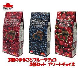 フルーツ まるごと チョコレート 3種 (チェリー・ブルーベリー・クランベリー) 各100g 【アソート3箱セット】カナダ土産 グルメカナディアーナ チョコレートにフルーツまるごと 人気カナダ旅行 お土産袋サービス 日本語表示シールはがし クール便