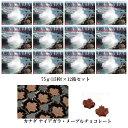 カナダ ナイアガラ・メープルチョコレート 75g(15粒入り) ×12箱 激安 まとめ買い カナダ土産 グルメカナディアーナ …