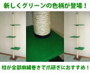 【送料無料!売れ筋商品!】キャットタワー 麻縄巻き支柱 棚板3枚(グリーン) 天井突っ張りタイプ 猫タワー 爪とぎ 省スペース