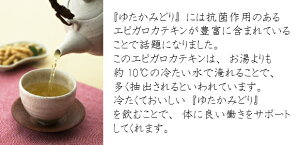 【鹿児島産ゆたかみどり100g】ゆうパケット送料無料世界一受けたい授業で話題!【smtb-t】【RCP】