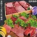 【送料無料】銘柄常陸牛A5等級黒毛和牛6点盛り食べ比べ焼肉セット600g冷凍品3〜4人前分 2セット購入でお肉増量中