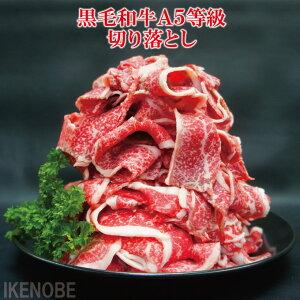 お得用黒毛和牛A5等級切り落とし500g冷凍 使い易く小分けしてます すき焼き用 牛丼用 肉じゃが煮物 国産牛肉 お歳暮 ギフト 贈り物 お取り寄せグルメ 赤身