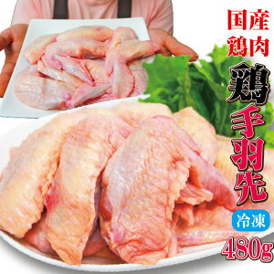 480g国産手羽先冷凍品 訳ありではないけどこの格安 【業務用】【鶏肉】【とり肉】【鳥肉】【唐揚げ】【鍋】