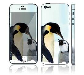 【お取寄せ】 iPhone SE/5S DecalSkin スキンシール [AM11/ペンギン] デコシール デコシート 前面シール 背面シール iPhone SE 5S iPhoneSE iPhone5S 送料無料 アイフォン アイフォーン アイホン